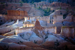 Bryce Canyon hoodoos in the first rays of sun Stock Image