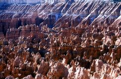 Bryce Canyon Hoodoos Royalty Free Stock Images