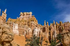 Bryce Canyon Hoodoos looking up from hiking trail royalty free stock photo