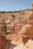 Bryce Canyon Hoodoos Mountain Landscape. Bryce Canyon National Park Hoodoos mountain vista with trees and blue skies in Utah Stock Photo