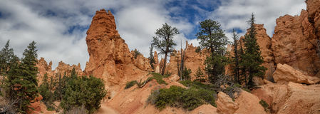 Bryce Canyon hoodoos Navajo Trail, Utah Royalty Free Stock Images