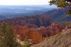 Bryce Canyon i morgonljuset Arkivfoto