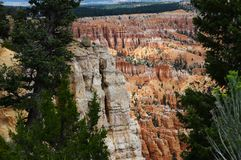 Bryce canyon landscape, USA. Bryce canyon landscape, scenic view of amphiteater, Utah, USA Stock Photography