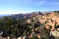 Bryce canyon landscape, USA Royalty Free Stock Photo