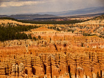 Bryce Canyon Layers of Erosion. Bryce Canyon is not a canyon but a series of amphitheaters Royalty Free Stock Image