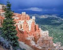 Bryce Canyon na primavera Foto de Stock
