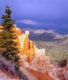 Bryce Canyon na primavera Fotos de Stock Royalty Free