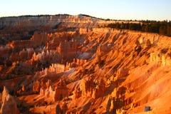 Bryce Canyon National Park Imagem de Stock Royalty Free