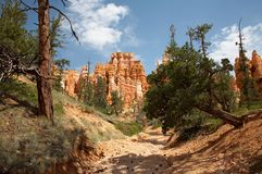 Bryce Canyon National Park. Queens Garden Trail Bryce Canyon National Park Utah Stock Photo