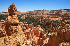 Bryce Canyon National Park. A View from Bryce Canyon National Park, Utah stock photos
