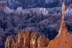 Bryce Canyon National Park Royalty Free Stock Images