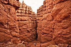 Bryce Canyon National Park Images stock