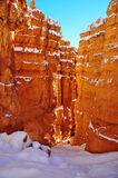 Bryce Canyon National Park Arkivfoto