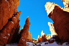 Bryce Canyon National Park Royaltyfria Foton