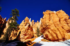 Bryce Canyon National Park Arkivbilder