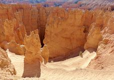 Bryce Canyon National Park stock foto