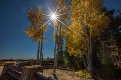 Bryce Canyon National Park stock afbeeldingen