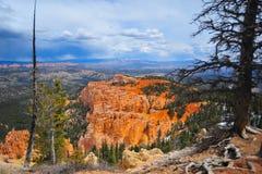 Bryce Canyon National Park Imagem de Stock