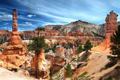 Bryce Canyon National Park Immagine Stock