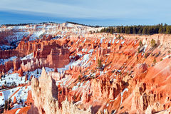 Bryce Canyon National Park. Bathed in early morning light Stock Photography