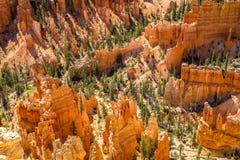 Bryce Canyon National Park Fotos de archivo libres de regalías