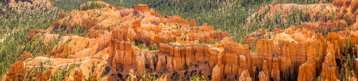 Bryce Canyon National Park Fotografía de archivo libre de regalías