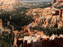 Bryce Canyon National Park in the Autumn. Bryce Canyon National Park showing autumn colors. Massive rock formations in creams, white, pinks and orange. Trees Royalty Free Stock Photo