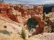 Bryce canyon national park - Utah USA America stock photography