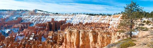 Bryce Canyon National Park en invierno Imagen de archivo