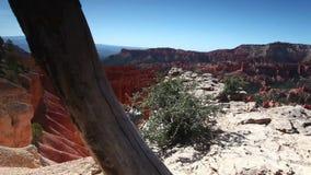 Bryce Canyon National Park en Utah, Etats-Unis banque de vidéos