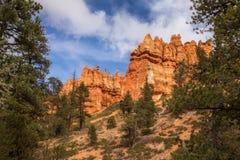 Bryce Canyon National Park, Etats-Unis photo libre de droits