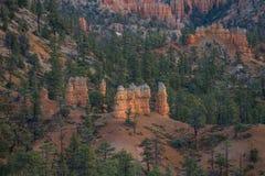 Bryce Canyon National Park, EUA fotos de stock royalty free