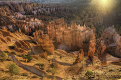 Bryce Canyon National Park at first light Royalty Free Stock Photo