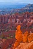 Bryce Canyon National Park, het Zuidwesten de V.S. van Utah Stock Afbeeldingen