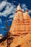 Bryce Canyon National Park Hoodoo fotos de archivo libres de regalías