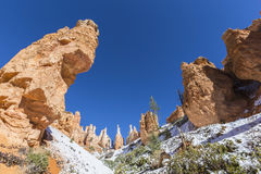 Bryce Canyon National Park Hoodoo Formations royalty free stock images