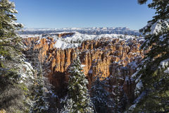 Bryce Canyon National Park Hoodoo and Pines with Fresh Snow Stock Photos