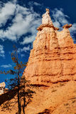 Bryce Canyon National Park Hoodoo Royalty Free Stock Photos
