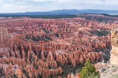 Bryce Canyon National Park - The Hoodoos. The best architect... is Nature Stock Photos