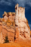 Bryce Canyon National Park Hoodoos Stock Image