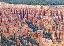 Bryce Canyon National Park Hoodoos Royalty Free Stock Photography