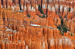 Bryce Canyon National Park i vinter, Utah Arkivbilder