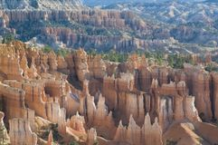 Bryce cayon glows in the early morning light. Bryce canyon national park iconic hoodoos colors light up in early morning sun Stock Image