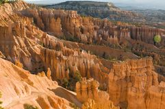 Bryce cayon glows in the early morning light. Bryce canyon national park iconic hoodoos colors light up in early morning sun Stock Photography