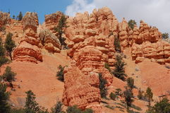 Bryce Canyon National Park. Is a national park located in southwestern Utah in the United States. The major feature of the park is Bryce Canyon, which despite Royalty Free Stock Images