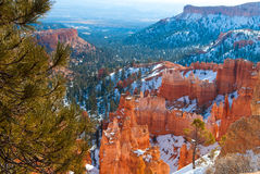 Bryce Canyon National Park nell'inverno Fotografie Stock