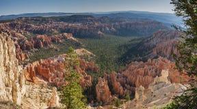 Bryce Canyon National Park Panorama sikt arkivfoto