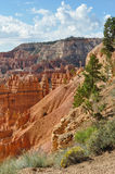 The Bryce Canyon National Park Royalty Free Stock Photos