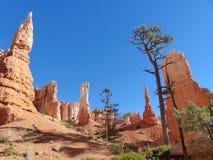 Bryce Canyon National Park Scenic-Unglücksboten Stockbilder