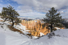 Bryce Canyon National Park Snowy sikt Arkivfoton